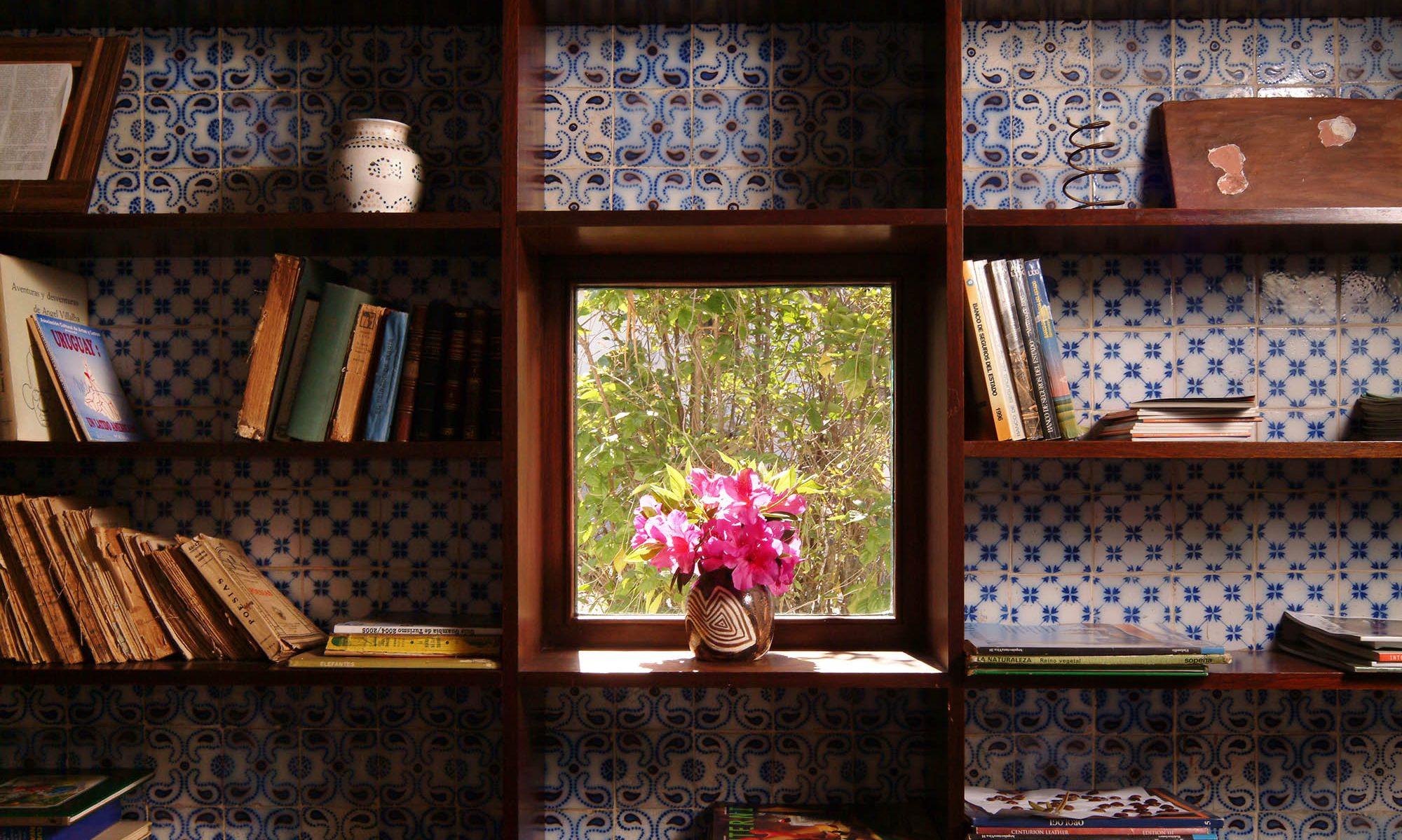 Blog de Graciela Balparda